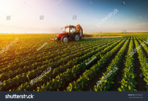 agronomics, forestry and food science